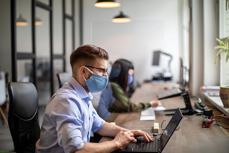 Zarobki specjalistów w branży informatycznej. Sprawdziliśmy, jakich pensji mogą żądać