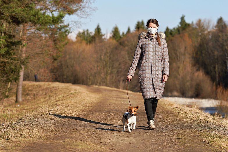 Mandat za spacer z psem. Będzie słono kosztować