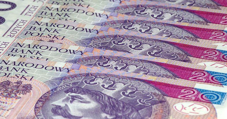 Kursy walut. Wracają obawy o przyszłość gospodarczą, a złoty traci na wartości.