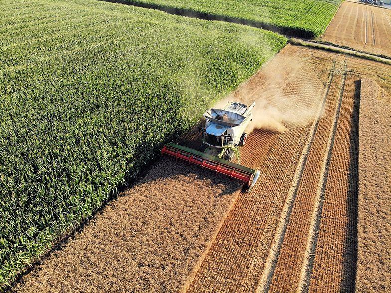 Rolnicy mają ostatnie dwa dni na złożenie wniosku. Inaczej wsparcie przepadnie