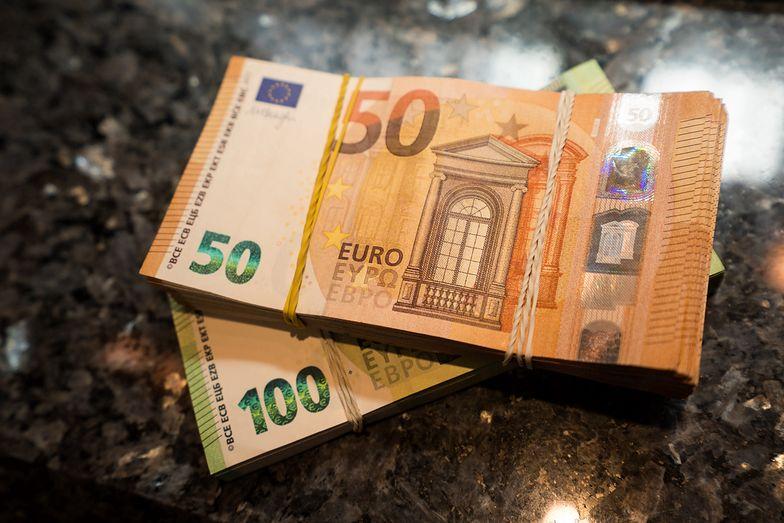 Kursy walut. Na początku roku NBP będzie ograniczać umocnienie złotego