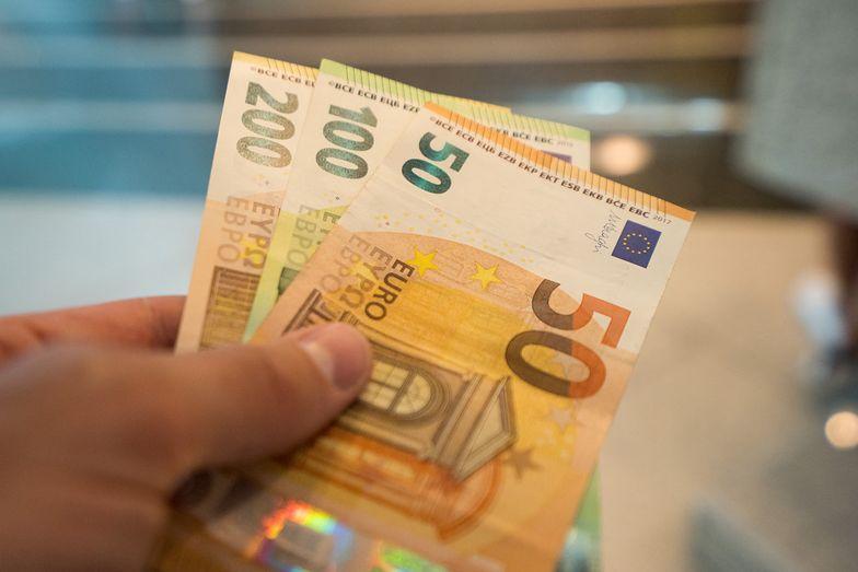 Kursy walut NBP 29.01.2020 Piątkowy kurs euro, funta, dolara i franka szwajcarskiego