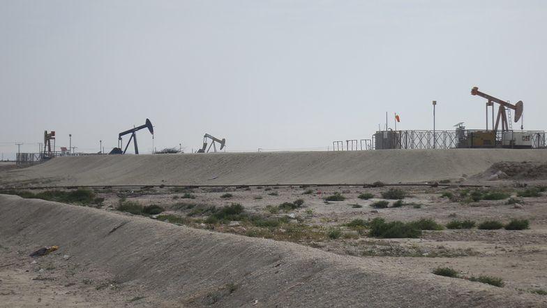Pracownicy złóż ropy naftowej są szczególnie narażeni na zakażenie (zdjęcie ilustracyjne).