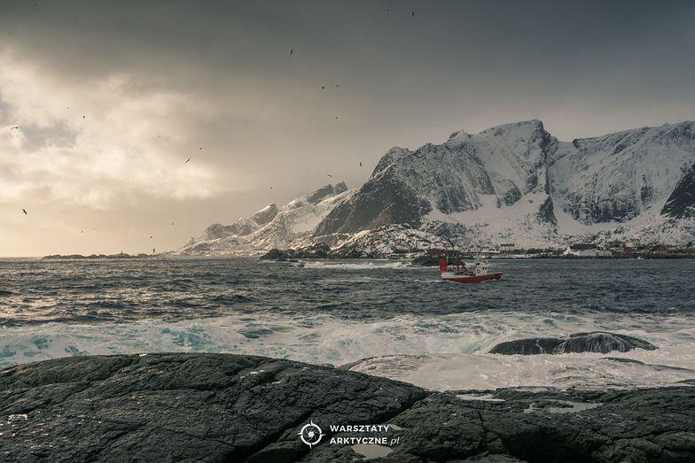 #moneypomaga. Fotograficzne warsztaty arktyczne