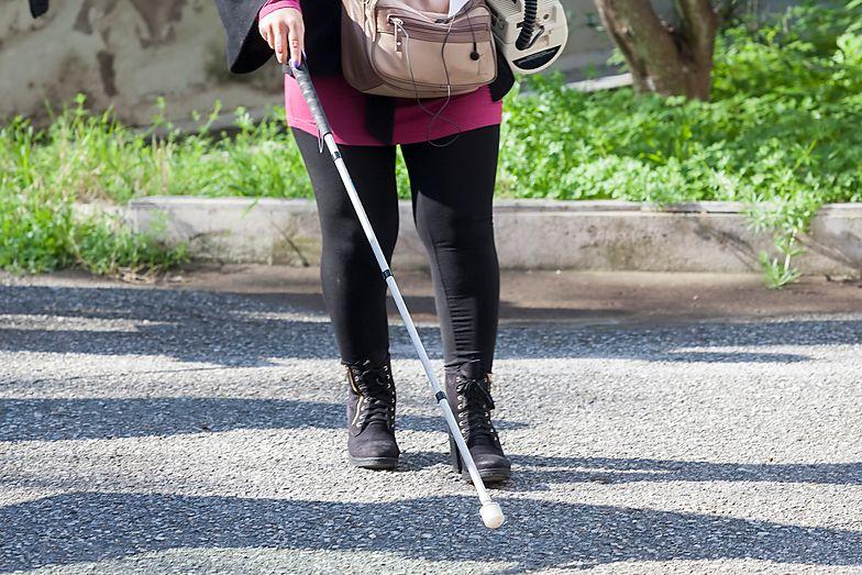 PIT 2019. Ulga rehabilitacyjna. Ile można odliczyć za przewodnika osoby niewidomej?