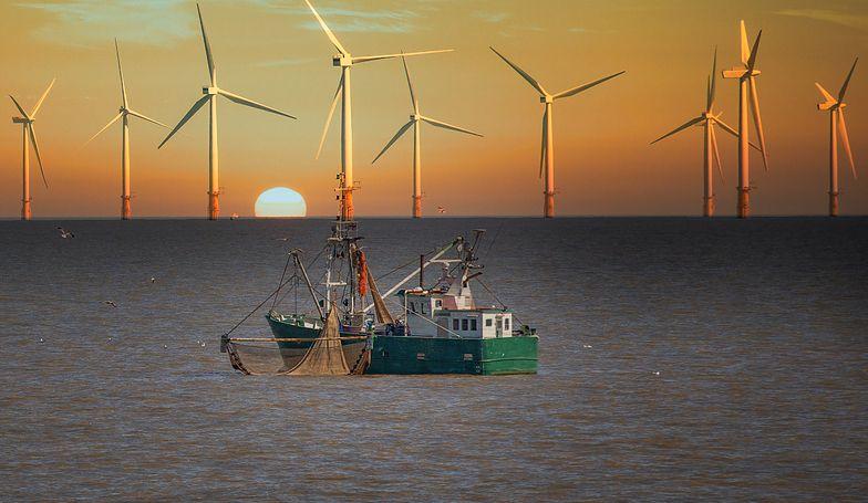 Polska chce się włączyć do systemu produkcji energii na morzu.