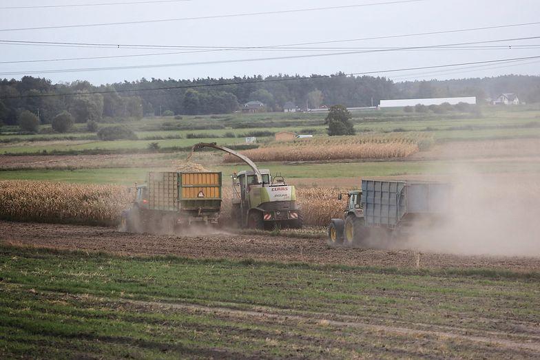 GUS: Najbiedniejsi Polacy to rolnicy i renciści