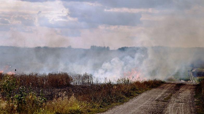 Sankcje za wypalanie traw są potencjalnie surowe, ale ryzyko wpadki - w praktyce znikome.