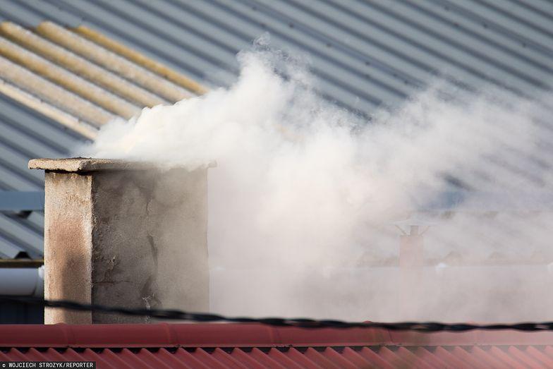 Fatalna jakość powietrza w Polsce. Przez smog przedwcześnie umierają tysiące Polaków