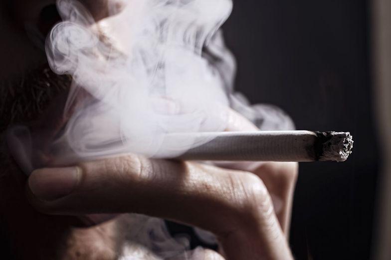 Przyjęta w 2010 ustawa antynikotynowa okazała się przepisem stosowanym z rzadka.