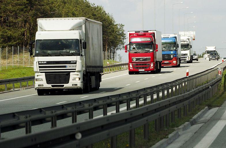 Eksport i import wzrosną w 2019 r. Szacunki MPiT