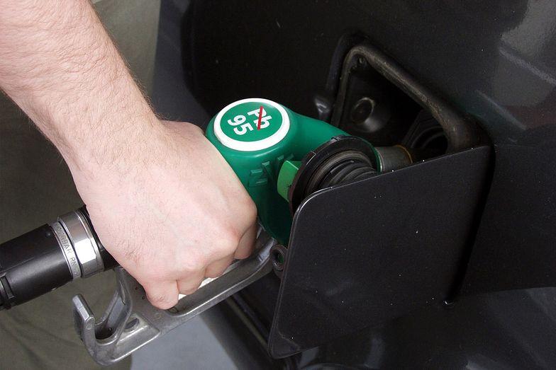 Ceny paliw w górę? Prognozy cen na stacjach