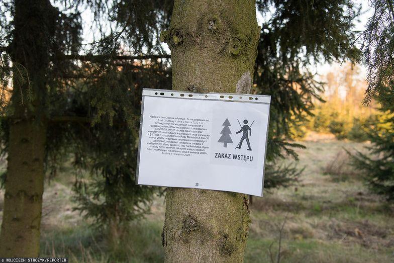 RPO domaga się zniesienia zakazu wstępu do lasów
