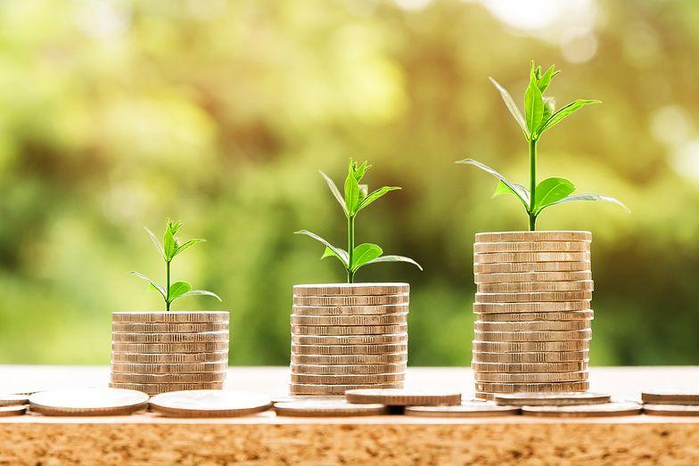 8 rzeczy, które powinieneś wiedzieć o pożyczce bez prowizji
