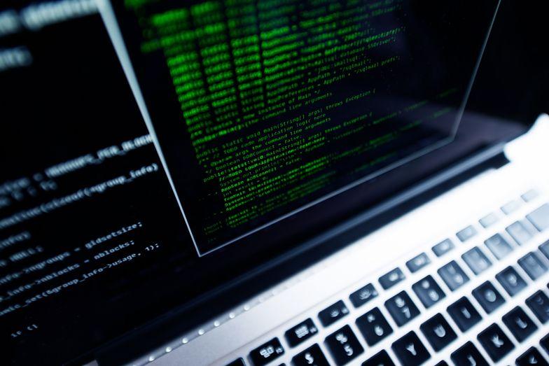 Jakie dane przydadzą się do rozliczenia przez internet?