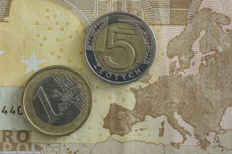 Kursy walut. Co z euro?