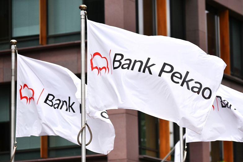 Bank Pekao po dwóch kwartałach przerwy pokazał wzrost zysków