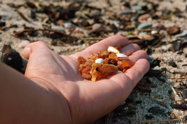 Ministerstwo Środowiska przygotowało projekt zmian w przepisach, by lepiej chronić bursztyn.