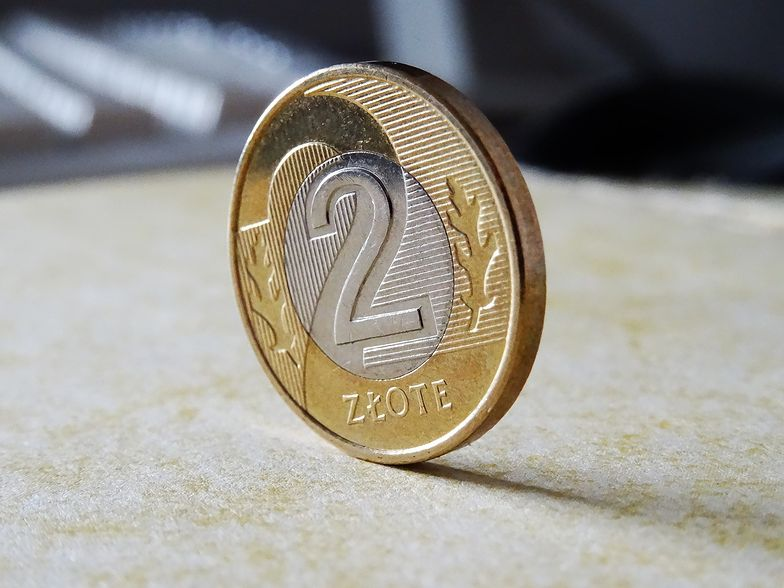 Kurs złotego utrzymuje się w okolicach 4,55 zł za euro.