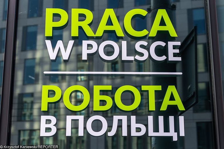 Ukraińscy informatycy traktują nas tranzytowo? Polska w tym starciu nie ma wielkich szans
