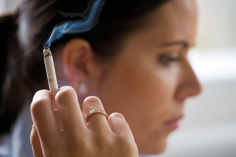 Paczka papierosów ma teoretycznie podrożeć o około 1 zł.
