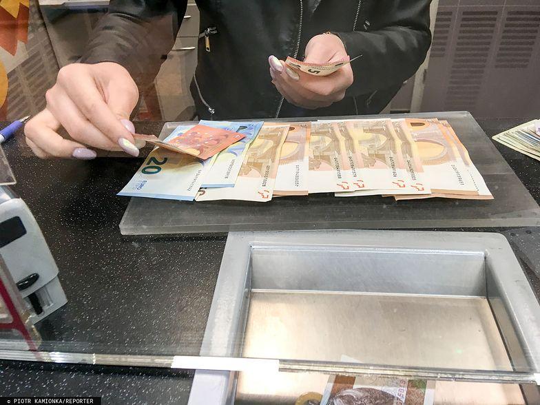 Kursy walut. Co ze złotym?