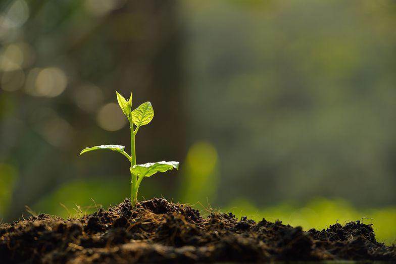 """""""Jeśli nie zajmiemy się problemami Ziemi, to zabraknie nam czasu, a przecież to, co robimy każdego dnia ma wpływ na codzienne życie konsumentów i jakość życia przyszłych pokoleń"""""""