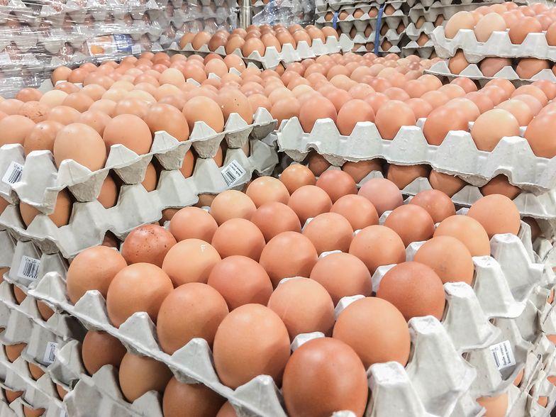 Polskie jajka ponownie pojawią się na Bliskim Wschodzie