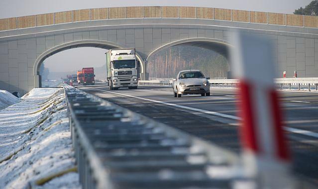 Już w przyszłym roku przy polskich autostradach ma stanąć nawet kilkadziesiąt stacji ładowania aut elektrycznych