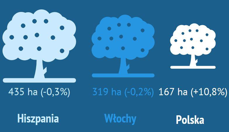 Coraz większy obszar Polski zajmują sady.