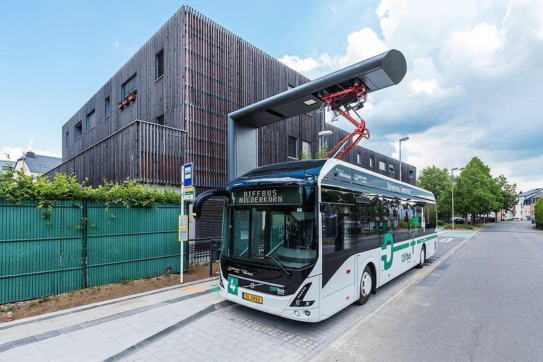 Ekologiczny transport – przyjazne miasto