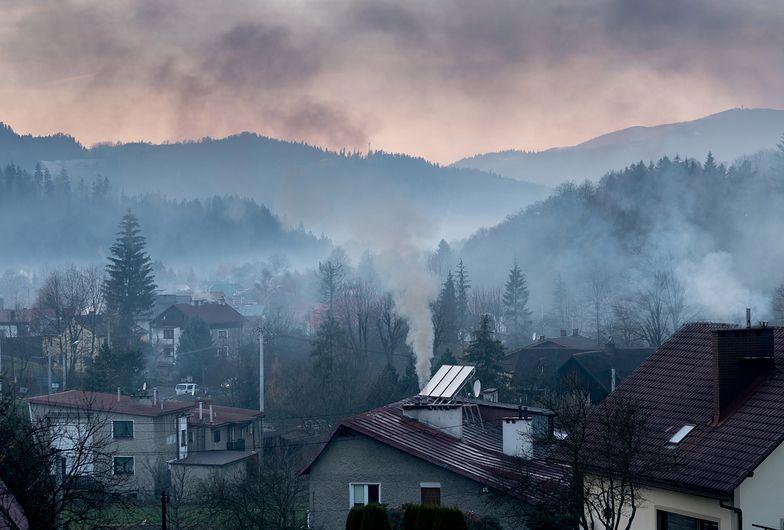 Smog. Sejmowa komisja opowiada się za poprawkami dot. kar za sprzedaż i import kopciuchów