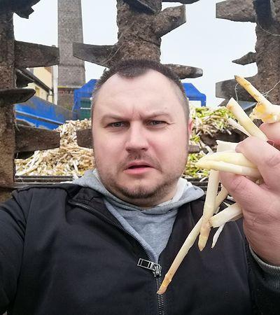 Pojechałem na szparagi do Niemiec. Już wiem, kto zastępuje Polaków na zbiorach