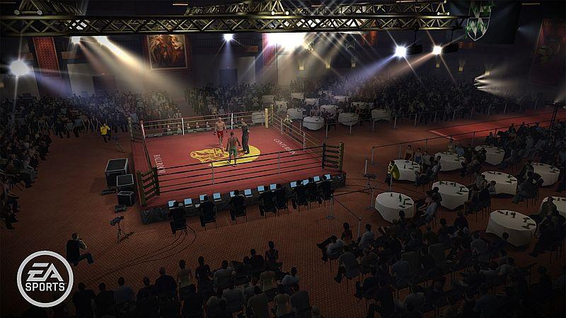 Pot i krew - galeria z EA Sports MMA