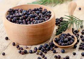 Jałowiec - na problemy żołądkowe, właściwości przeciwzapalne, olejek z jałowca