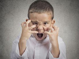 Bunt dwulatka - zachowanie, jak sobie z nim radzić