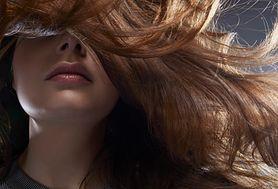 Brodawka włosa – budowa, funkcje, wzrost włosa