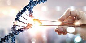 Heterozygota, homozygota i hemizygota – co warto wiedzieć?