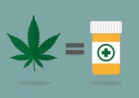 Czy marihuana będzie dostępna dla chorych?