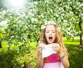 Alergia pyłkowa u dzieci