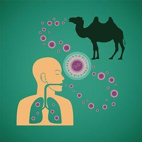 Wirus MERS coraz bardziej niebezpieczny
