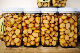 Czosnek kiszony – jakie ma właściwości oraz jak go przygotować? (WIDEO)
