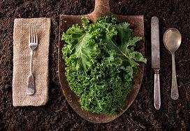 10 zielonych warzyw, które można jeść zamiast jarmużu