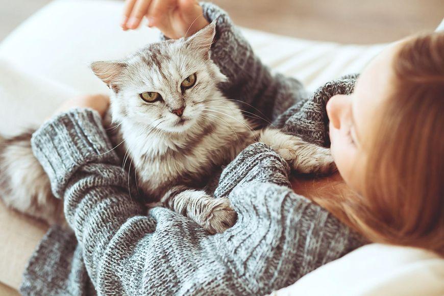 """Uczulają nawet koty nazywane """"hipoalergicznymi"""""""