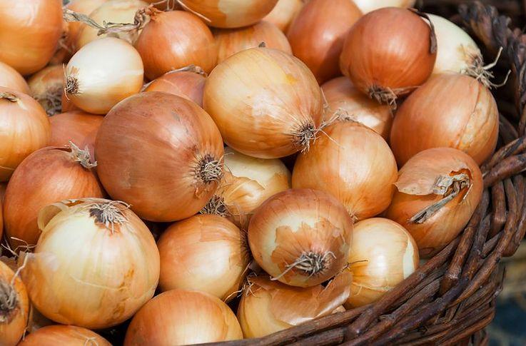 Okłady i wywary z cebuli. Kiedy warto je stosować