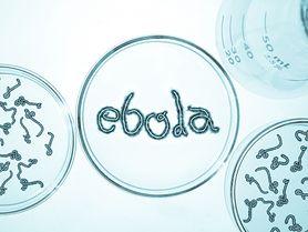Szkocka pielęgniarka zarażona wirusem Ebola wyzdrowiała