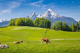 Cudowne austriackie góry (WIDEO)