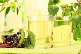 Woda brzozowa - właściwości
