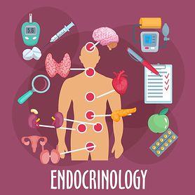 Endokrynolog - kim jest i czym się zajmuje? Jakie choroby leczy endokrynolog?