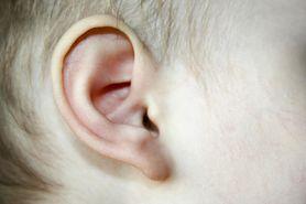 Ból ucha u niemowlaka